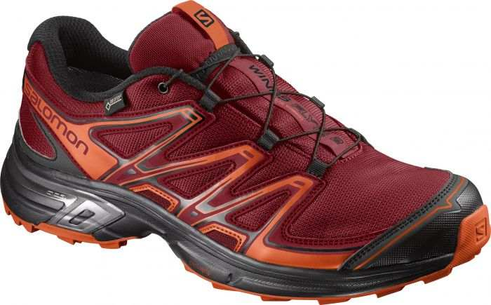 Salomon WINGS FLYTE 2 GTX® 2017